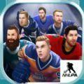 Puzzle Hockey游戏