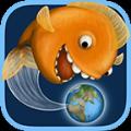 小金鱼历险记