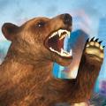 愤怒的熊横冲直撞