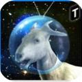 模擬太空山羊