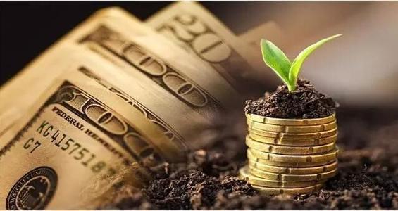 能變土豪的投資賺錢項目app