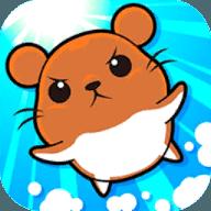 仓鼠竞赛 v1.0.4