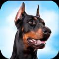 杜賓狗模擬器