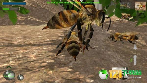 蜜蜂生存模拟器图3
