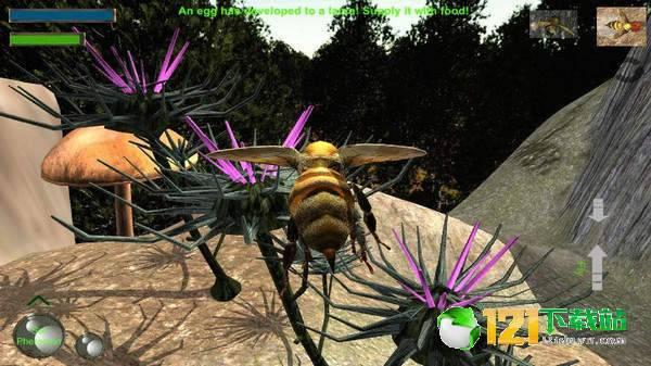 蜜蜂生存模拟器图4