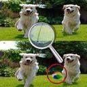 5个不同点小狗身上的斑点 v1.0.0