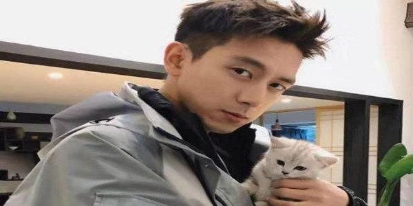 2019擼貓游戲大賞
