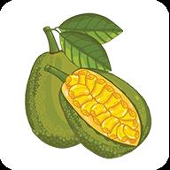 菠蘿蜜賺錢