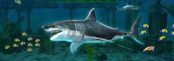 鯊魚吞噬游戲
