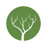 树林分期 v1.0