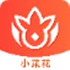 小菜花 v1.0