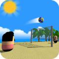 排球海滩 v1.1