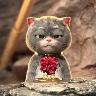 动漫猫戴金箍视频壁纸