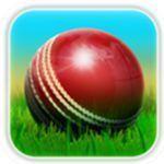 抖音cricket 3D