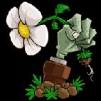 植物大战僵尸贝塔版
