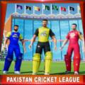 2020年巴基斯坦板球杯