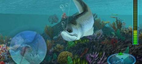 模拟钓鱼的3d游戏