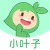 小葉子智能陪練 v4.5.0