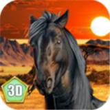 非洲马模拟器