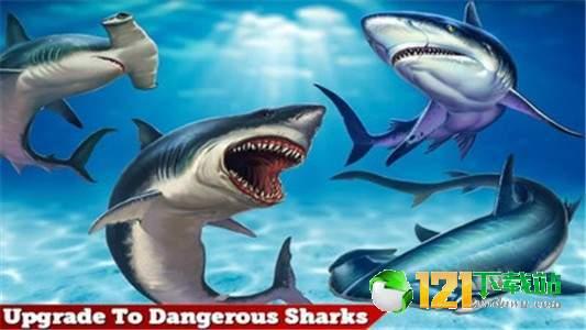 烈鲨袭击图1