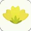 小菜花轉 v1.0.0