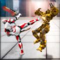 双剑英雄机器人改造3D