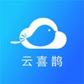 云喜鹊 v1.0.0