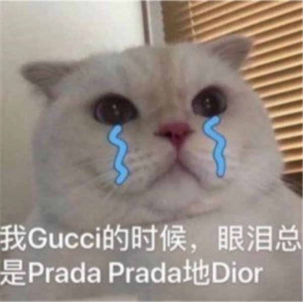 Prada的眼泪PradaPrada地掉表情包