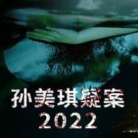 孙美琪疑案2022