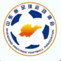 齐鲁足球app