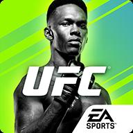 UFC終極格斗冠軍2