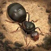 螞蟻地下王國破解版