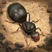 蚂蚁地下王国最新破解版