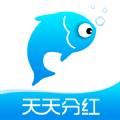 小猫种鱼app